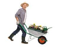 Jardinier mûr poussant une brouette photo stock