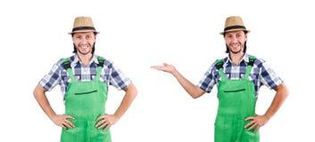 Jardinier masculin d'isolement sur le blanc images stock
