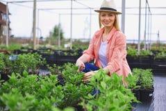 Jardinier occupé Images libres de droits