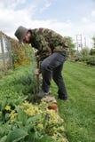 Jardinier organique Photos libres de droits