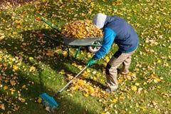Jardinier pendant le temps d'automne Photo libre de droits