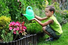 jardinier peu photos libres de droits