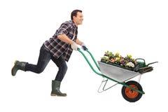 Jardinier poussant une brouette complètement des fleurs photo libre de droits