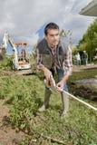 Jardinier prenant des mesures image stock