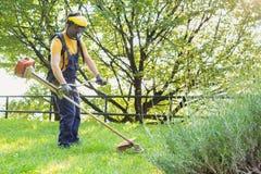 Jardinier professionnel à l'aide d'un coupe-rives dans le jardin image stock