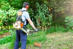 Jardinier professionnel à l'aide des tondeuses d'une haie dans le jardin photographie stock libre de droits