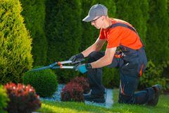 Jardinier professionnel au travail photographie stock