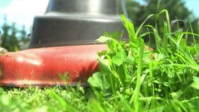 Jardinier s'approchant avec la tondeuse à gazon banque de vidéos