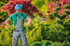 Jardinier satisfaisant dans le jardin photos stock