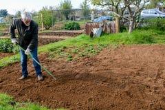 Jardinier travaillant dans un jardin de la communaut? photographie stock