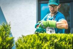 Jardinier Trimming Shrub photographie stock libre de droits