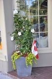 Jardiniere with different flowers and Canadian flag in seen Downtown of Niagara-on-the-Lake from Ontario province. Of canada on 25th June 2017 Stock Photos