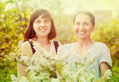 Jardiniers à la centrale de meadowsweet Photo stock