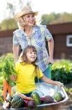 Jardiniers de famille avec l'enfant de récolte s'asseyant sur la brouette avec les légumes frais image libre de droits