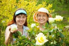 Jardiniers féminins à la centrale rose Images stock