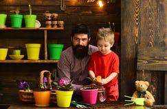 jardiniers heureux avec des fleurs de ressort Nature d'amour d'enfant d'homme barbu et de petit gar?on Arrosage de soin de fleur  images libres de droits