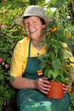 Jardinière aînée de femme Image libre de droits