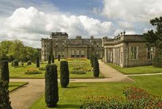 Jardins à la maison majestueux Photos libres de droits