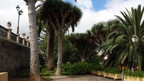 jardins Photos libres de droits