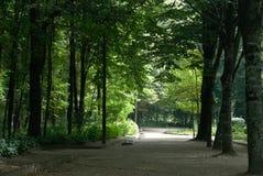 Jardins au Portugal Photographie stock
