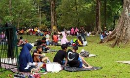 Jardins botânicos de Bogor fotografia de stock