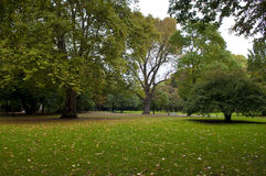 Jardins botânicos de Colónia Fotografia de Stock Royalty Free