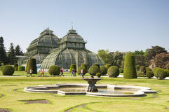 Jardins botânicos e a palma Haus no palácio de Schoenbrunn, Viena, Áustria Fotografia de Stock Royalty Free