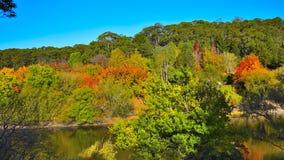 Jardins botânicos elevados da montagem Imagem de Stock Royalty Free
