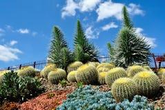 Jardins botânicos reais imagens de stock royalty free