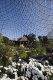 Jardins botaniques Photo stock