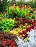 Jardins botaniques Photos stock
