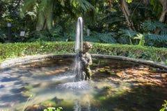 Jardins botaniques de Malaga Photo libre de droits