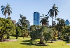 Jardins botaniques de ville de Brisbane Photo libre de droits