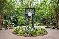 Jardins botânicos de Singapura Fotografia de Stock