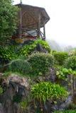 Jardins brumeux Photo libre de droits