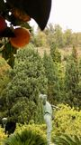 Jardins d'Alonso-parc de Pedro Luis de sculpture Biznaguero-Andalousie de Malaga Image stock