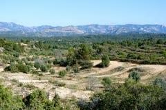 Jardins d'olive et d'amande à proximité du village de Cretas image libre de droits