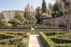 Jardins de Alhambra Fotografia de Stock Royalty Free