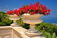 Jardins de Bahai. Haifa. Fotos de Stock