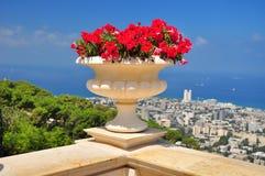 Jardins de Bahai. Haifa. Foto de Stock Royalty Free