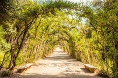 Jardins de Boboli fotografia de stock royalty free