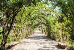 Jardins de Boboli foto de stock