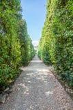 Jardins de Boboli imagens de stock