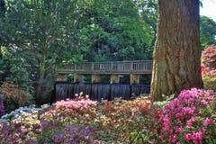 Jardins de Bodnant Photos libres de droits