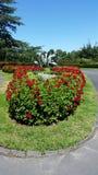 Jardins de Cantorbéry Images libres de droits