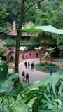 Jardins de cascade photographie stock