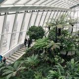 Jardins de ciel à Londres Photographie stock libre de droits