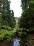Jardins de Cragside avec le courant, le Northumberland images stock