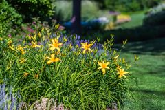 Jardins de Duncan dans le wshington de Spokane photographie stock libre de droits