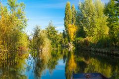 Jardins de flutuação amiens france de Hortillonnages Fotografia de Stock